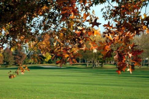 FoxChase Golf Club_Area Attraction_Things to Do