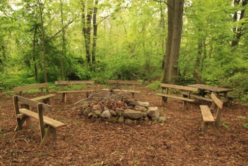 Campfire Summer Outdoor Space