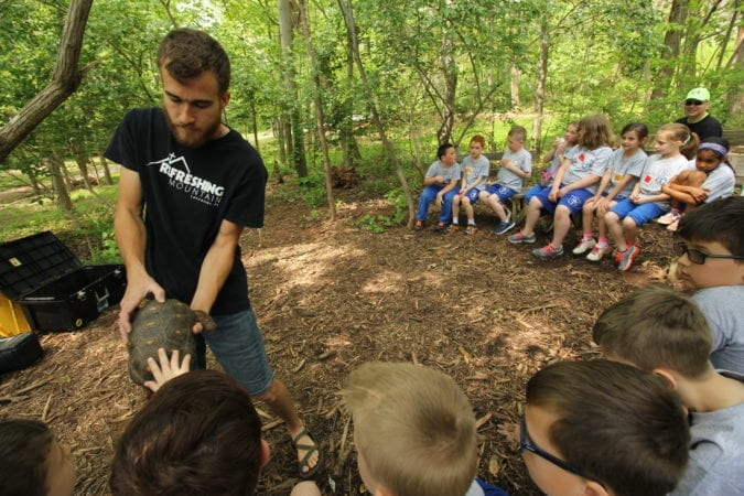 Nature Studies_School Group_Mark_Turtle